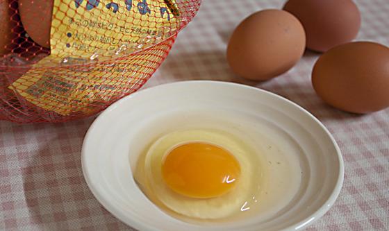かっぱの有精卵